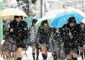 日本丝袜品牌历史介绍,日本丝袜品牌排行榜