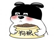 猫粮狗粮进口香港转运清关流程与时效