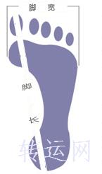 海淘国际尺码对照表女士